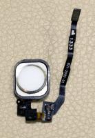 ремонт конопки home iphone 5